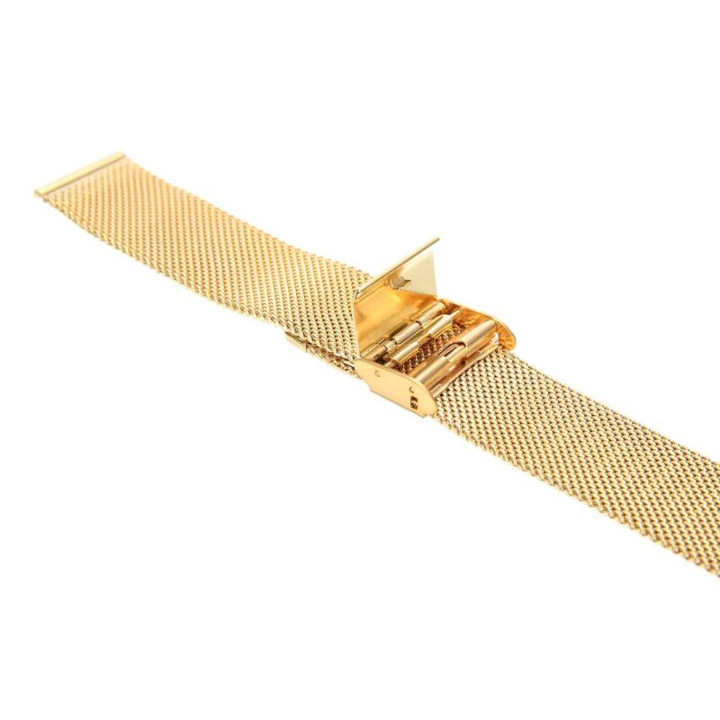 Stainless Steel Mesh Watch Band with Adjustable Clasp 8
